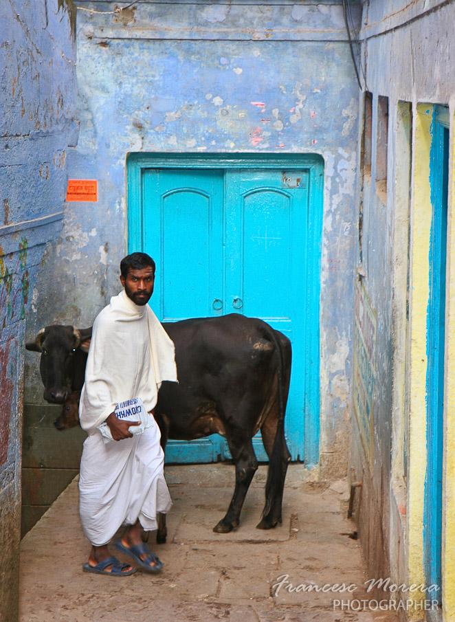 Barrio del Chowk, vaca y musulman