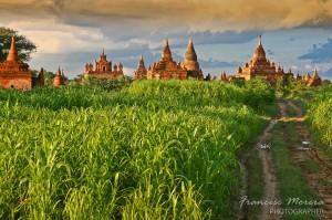 Templos entre los campos de Bagan