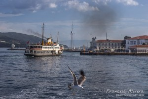 Estambul_2014_0706