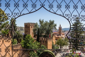 Kasbah and Kebir mosque, from above