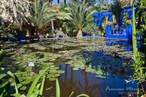 Marroc_II_2012_0791