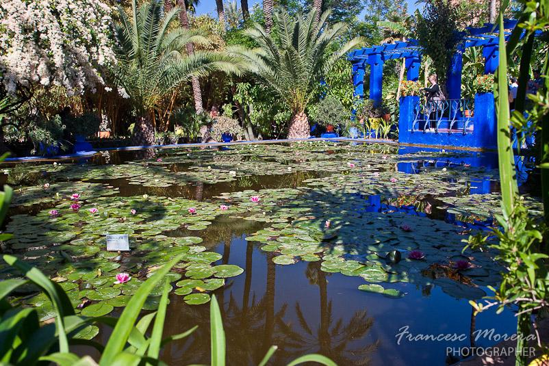 Jardines De Majorelle Un Oasis Azul En La Ciudad Roja Cuaderno De