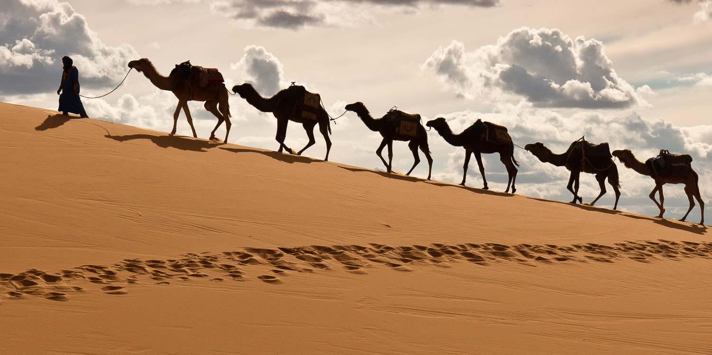 Los colores del Sahara