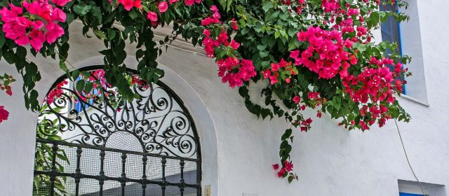 Frigiliana: charm and history