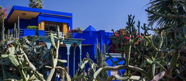 Majorelle Gardens: a blue oasis within the red city