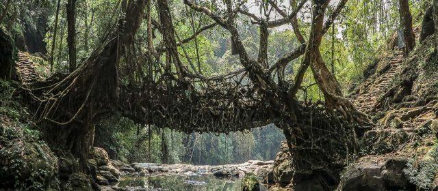 """Meghalaya, la """"morada de las nubes"""""""