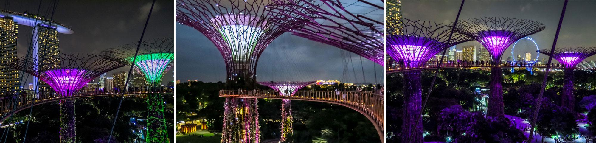 Gardens by the bay un inesperado toque de magia en singapur cuaderno de viajes for El super garden grove